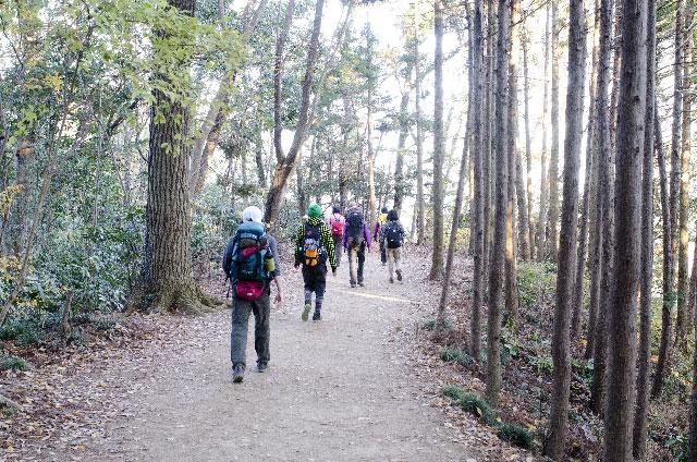ネイチャーゲーム・リーダーに森を案内される団体
